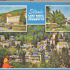 CPIB 15266 - CARTE POSTALA - SLANIC MOLDOVA, MOZAIC