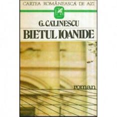 Bietul Ioanide - roman