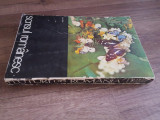 FLUTURI DIN ROMANIA - I. STANOIU, 1979