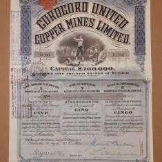 Actiuni - Titlu la purtator - Minele de cupru - 1911