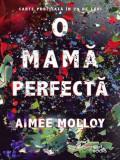 O mama perfecta   Aimee Molloy