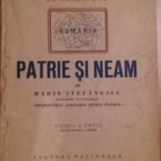PATRIE SI NEAM - MARIN STEFANESCU