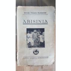 Abisinia- Mihai Tican Rumano