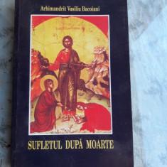 SUFLETUL DUPA MOARTE - ARHIMANDRIT VASILIU BACOIANI