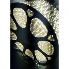 Furtun Luminos Tip Banda 6000 LEDuri SMD5050 Alb Rece Rola 100m