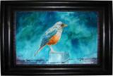 Acuarela - zgribulita in ploaie (tablouri tablou picturi pictura)