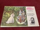Revista Arici Pogonici nr 1 anul 1964 !