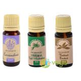 Pachet Uleiuri Esentiale de Aromoterapie: Ulei de Lavandina (Lavanda) 10ml + Ulei de Tea Tree (Arbore de Ceai) 10ml + Ulei de Verbina Exotica 10ml