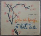 Poti sa fugi in papuci de turte dulci - Carmen Firan/ ilustratii C. Piliuta