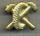 Y 1733 INSIGNA - MILITARA -SEMN DE ARMA - AUTO -PENTRU COLECTIONARI