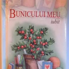 BUNICULUI MEU IUBIT de PAM BROWN , ilustrata de JULIETTE CLARKE , 2003