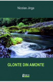 Glonte din amonte - Nicolae Jinga