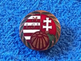 Insigna fotbal (Rara si Veche-cu talpa) - Federatia de Fotbal din UNGARIA