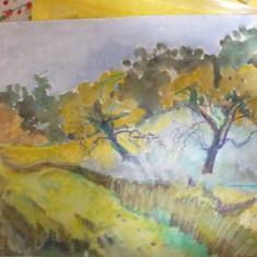 """tablou vechi """"Peisaj"""" Adam Baltatu"""