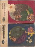 David Copperfield - Charles Dickens ( volumele 1 si 2 )