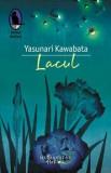 Lacul/Yasunari Kawabata, Humanitas Fiction