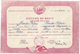 Diploma elev bilingva romana maghiara Oradea 1951 RPR