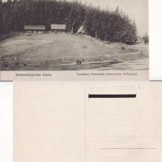 Cisnadie, Ardeal- Ferma Purcaretiu