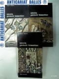 ISTORIA PICTURII BIZANTINE -Viktor Lazarev - 3 volume