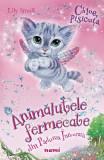 Chloe, pisicuta. Animalutele fermecate din Padurea Inrourata - Lily Small