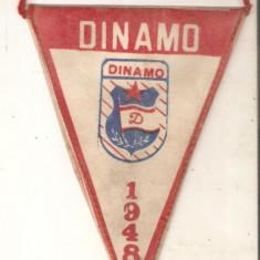 Fanion Dinamo 1948-1988