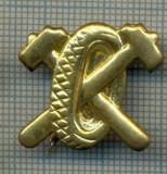 Y 1828 INSIGNA - MILITARA -SEMN DE ARMA - AUTO  -PENTRU COLECTIONARI