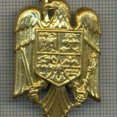 Y 1542 INSIGNA-MILITARA  -EMBLEMA COIFURA -PENTRU COLECTIONARI