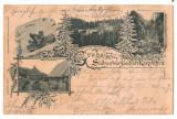 SV *  Statiunea Balneo Climaterica PALTINIS  /  KURHAUS HOHE RINNE  *  anii 1900
