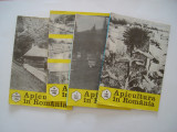 Apicultura in Romania - nr. 6, 7, 8, 10 pe anul 1982, Alta editura