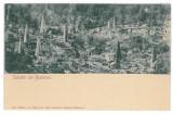 3749 - BUSTENARI, Prahova, Oil Wells, Litho, Romania - old postcard - unused