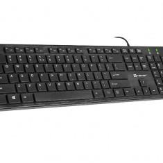 Tastatura Tracer Ofis Black