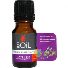 Ulei Esential de Lavanda (Lavender) Ecologic/Bio 10ml