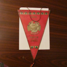 """PVM - Fanion vechi mare """"Suveranitatea Maghiaro Sovietica"""" Ungaria comunista"""