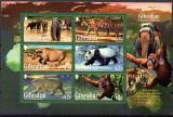 GIBRALTAR 2011, Fauna, serie neuzata, MNH, Nestampilat