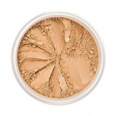 Pudra Pulbere Iluminatoare VOLLARE Loose Highlighter Powder Perfect Shine Beige 5 g