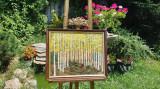 """PICTURA, tablou clasic """"Mesteceni in padure"""" (60x50)cm, pictor roman consacrat"""