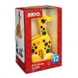 Jucarie de tras Girafa Brio