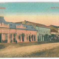 3457 - CAREI, Satu-Mare, Romania - old postcard - used - 1917, Circulata, Printata