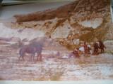 Film/teatru Romania- fotografie originala (25x19)-Profetul aurul si ardelenii 3