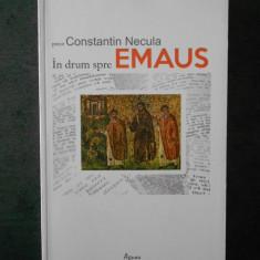CONSTANTIN NECULA - IN DRUM SPRE EMAUS