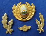 Insigna Militara Ofiter RADIOLOCATIE - Coifura insemn cascheta SEMN DE ARMA