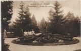 Carte postala Parc Baile Felix austro-ungara