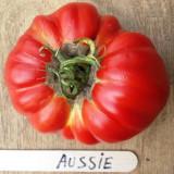 Tomate australia , rosii Soiul AUSSIE . 5 seminte pentru semanat