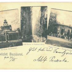 4243 - BUZIAS, Litho, Romania - old postcard - used - 1900, Circulata, Printata