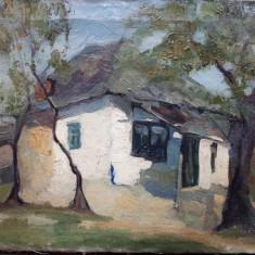 Peisaj cu casa, Nesemnat