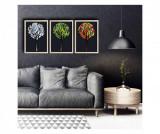 Cumpara ieftin Set 3 tablouri - Dazzle, Multicolor