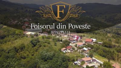 Vila cu piscina de inchiriat la munte foto