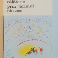 CALATORIE PRIN TARAMUL PICASSO-HELENE PARMELIN,BUCURESTI 1987