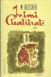AS - BLECHER M. - INIMI CICATRIZATE