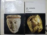PE URMELE LUI HOMER - HEINRICH SCHLIEMANN 2 VOLUME